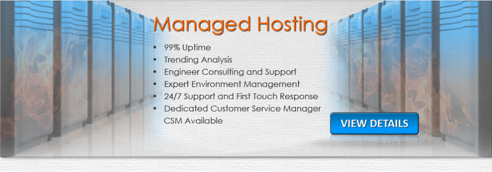 Website Hosting Specials